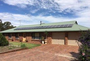 54 Arunga Road, Meadows, SA 5201