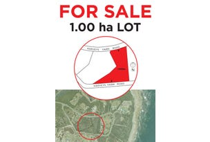 Lot 2, 286 Harvey's Farm Rd, Bicheno, Tas 7215