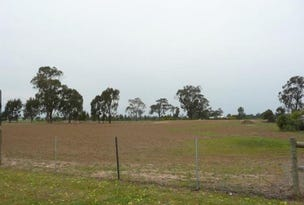 Lot 19 Swanson Street, Wilby, Vic 3728