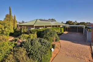 61 Belleview Drive, Irymple, Vic 3498