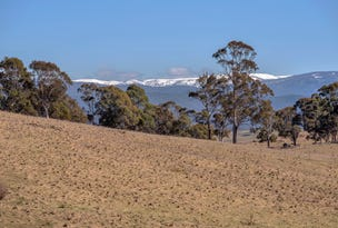 Lot 2, 227 High Forest  Road, Omeo, Vic 3898