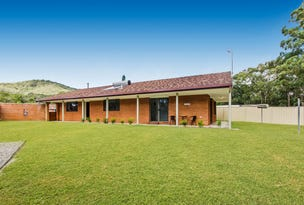 23 Honeysuckle Ave, Lakewood, NSW 2443