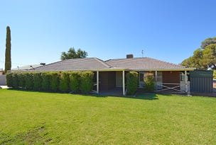 924 Karadoc Avenue, Irymple, Vic 3498