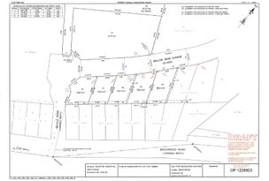 Lot 14 Willowdene Avenue, Beechwood, NSW 2446