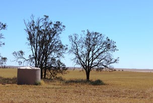 0 East of Wahpool Road, Chillingollah, Vic 3585