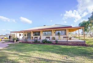 Farm 323 Koonadan Road, Leeton, NSW 2705