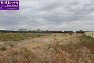 6 Cook Avenue, Blyth, SA 5462