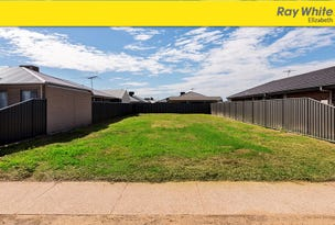 35 (Lot 1701) Petherton Road, Andrews Farm, SA 5114