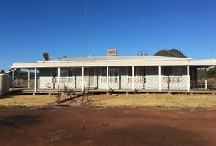 Farm 8833 Mid Western Highway, Rankins Springs, NSW 2669