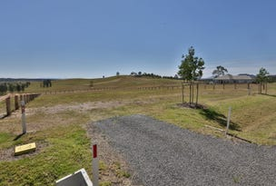 Radford Park - Lot 3 Pyrus Ave (off Elderslie Road), Branxton, NSW 2335
