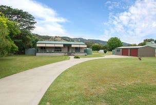 54-56 Frederick Street, Woolomin, NSW 2340