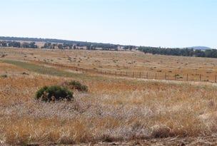 Talmore North Yalgogrin rd, Tallimba, NSW 2669