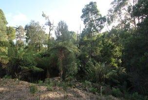 Faheys Lane, Irishtown, Tas 7330