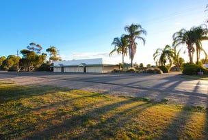 6 Thelma Road, Barmera, SA 5345