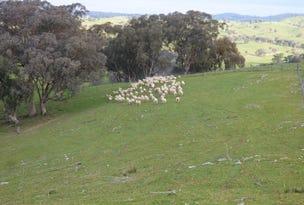Lot 1, 2100 Taylor's Flat Road, Boorowa, NSW 2586