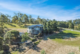 58 Hilltop Parkway, Tallwoods Village, NSW 2430