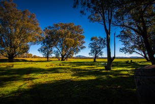 Lot 251 Thurgoona Drive, Wirlinga, NSW 2640