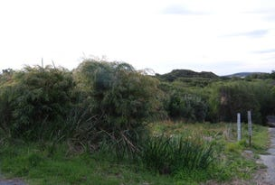 Lot 226 Klem Road, Goode Beach, WA 6330