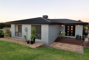 49 John Potts Drive, Junee, NSW 2663