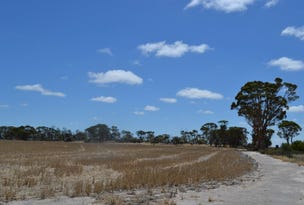 Lot 395 Cooalling Road, Cunderdin, WA 6407
