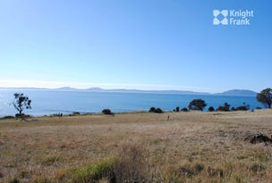 Lot 202 Tasman Highway, Swansea, Tas 7190