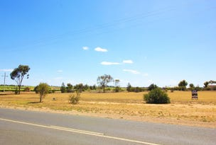 23 Edwards Road, Loxton North, SA 5333