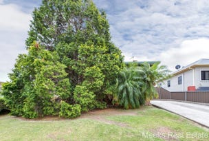 8 Moresby Street, Wallsend, NSW 2287