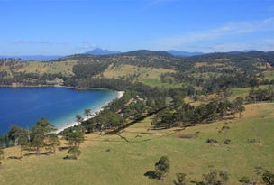 RA Off Roaring Beach Road, Surveyors Bay, Tas 7116