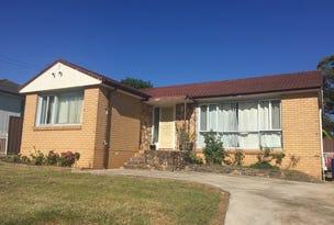 51 Hamel Rd, Mount Pritchard, NSW 2170