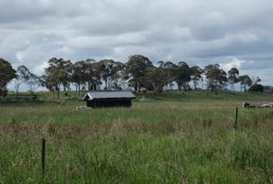 221 Baldersleigh Road, Guyra, NSW 2365