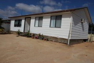 4 Isaacson Street, Waikerie, SA 5330