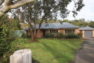 290 Black Swamp Rd, Foster, Vic 3960