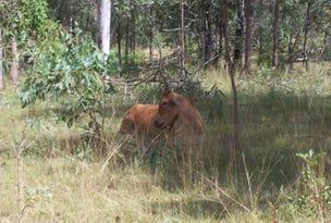 L11 Sues Road, Horse Camp, Qld 4671