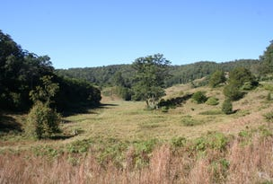 Lot 242 Galbraiths Road, Bellangry, NSW 2446