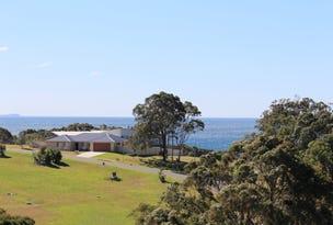58 Redhead Road, Hallidays Point, NSW 2430