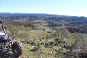 667 Ullamalla Road, Tambaroora, NSW 2795