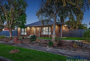 17 Heatherlea Crescent, Narre Warren, Vic 3805
