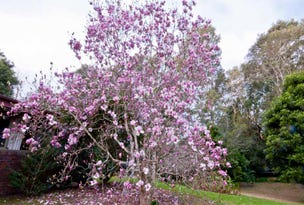 723 Yarramalong Road, Wyong Creek, NSW 2259
