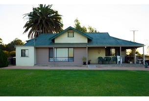 43 Anderson Road, Loveday, SA 5345