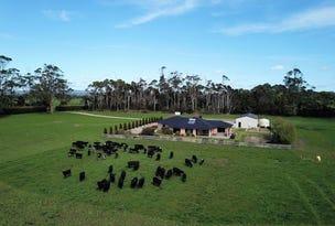 62 Blameys Road, Christmas Hills, Tas 7330