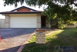 60 Hilliards Park Drive, Wellington Point, Qld 4160
