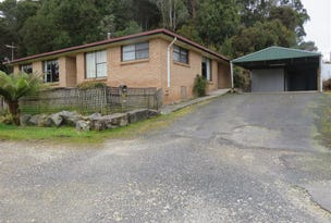 19 Smith Street, Zeehan, Tas 7469