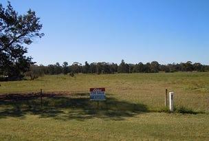 Lot 23, 111 Pine Hill Road, Narrandera, NSW 2700