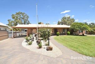 54 Cadell Street, Wentworth, NSW 2648