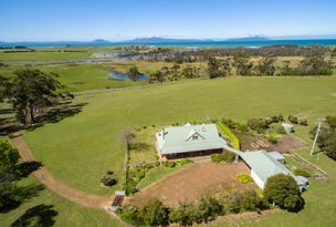 11541 Tasman Highway, Little Swanport, Tas 7190