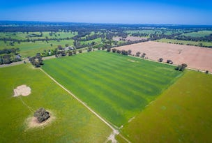 Lot 1, 3859 Riverina Highway, Bungowannah, NSW 2640