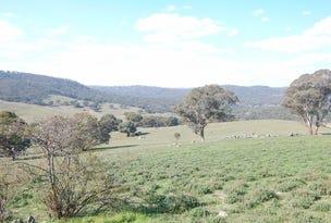 Tolbar Ironmungie Road, Dalgety, NSW 2628