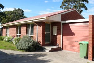 Unit 2/42 Ashley Street, Paynesville, Vic 3880