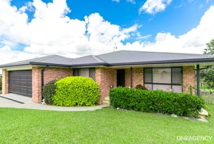 13 Springfields Drive, Greenhill, NSW 2440