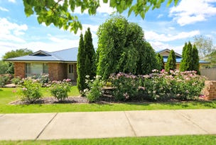 49 Tamar Drive, Tatton, NSW 2650